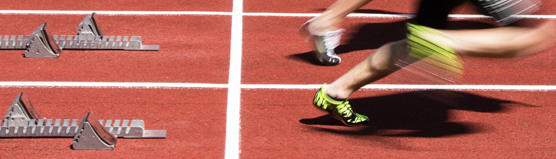 Medicina dello sport treviso fisiofit - Palestra casale sul sile ...